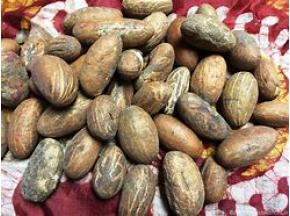 Kola-Nut-Market