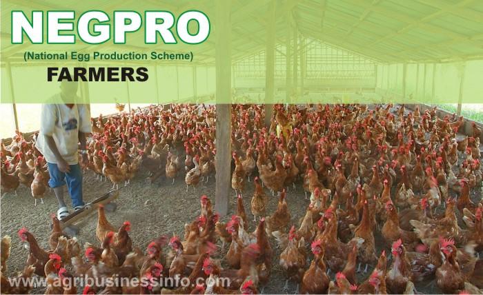 NEGPRO-Farmers
