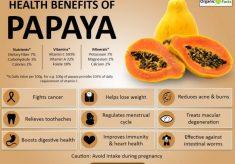 Papayainfographic