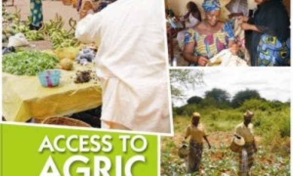 0.25% of Bank Loans go to Small African Farmers – Report