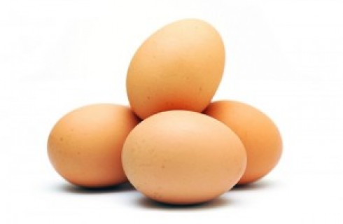 Farm produces egg powder to address glut