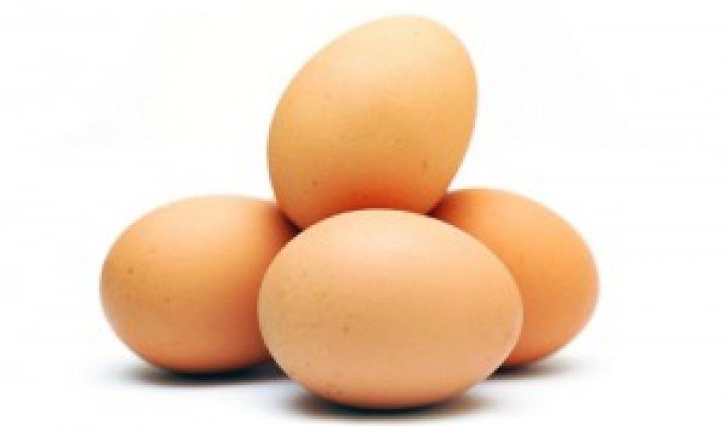 Farm produces egg powder to address glut