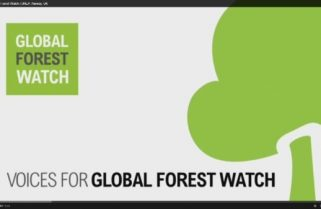 Global Forest Watch – 2017 Small Grants Fund