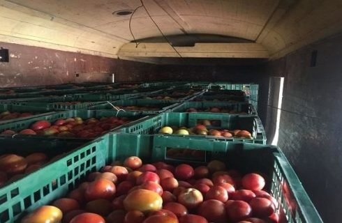 58 Years After, Fresh Tomatoes Arrive Lagos From Kano By Rail