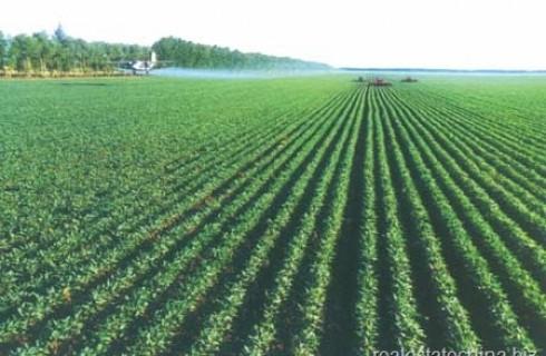 Graduate Agricultural Engineers Job at a Commercial Farm Establishment