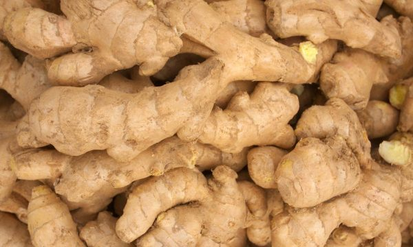 The Ginger Hub That Feeds Thousands