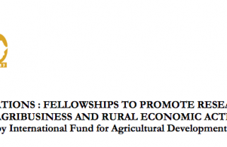 "Call For Applications: Fellowships To Promote Research On ""Youth Engagement In Agribusiness And Rural Economic Activities In Africa"