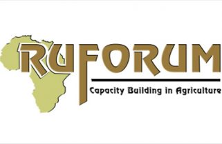 RUFORUM Doctoral Studies Scholarship in Agriculture and Food Science for Africans