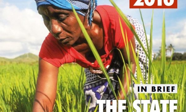 FAO 2016 State of Food and Agriculture Globally