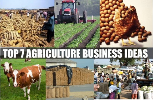 7 Exportable Products Of Commercial Benefit From Nigeria