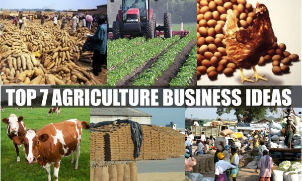Top 7 Agriculture Business Ideas in 2016