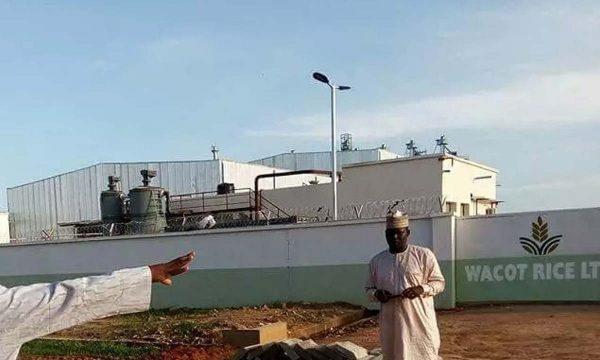 WACOT opens rice factory in Kebbi