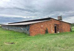 brick-poultry-house