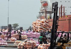 Foundation raises alarm on importation of dangerous food into Nigeria