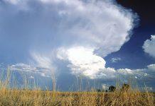 rainfall-weather